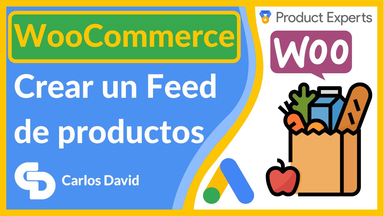 Crear un feed de Google Shopping en WooCommerce