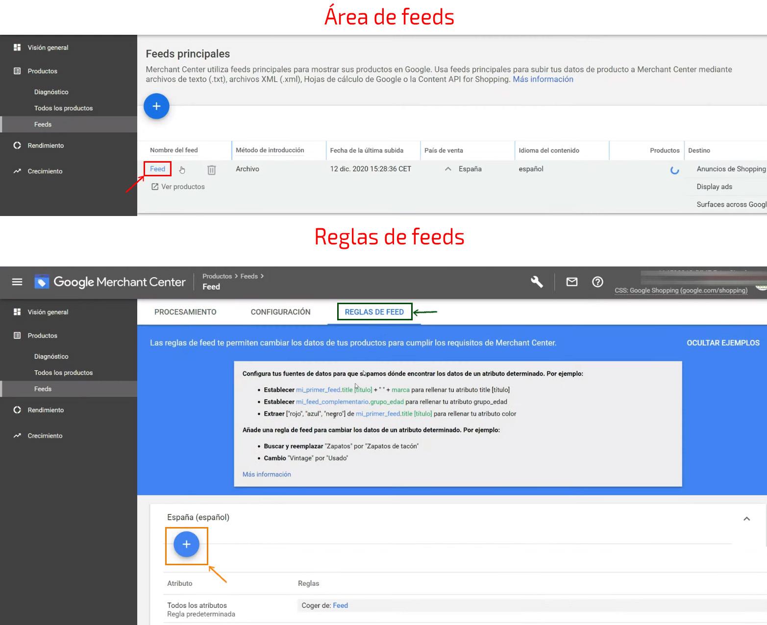 Selección de feed y etiqueta personalizada