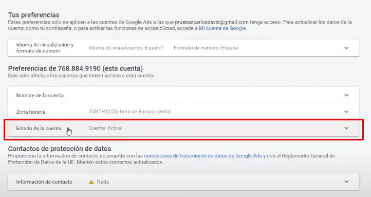 Estado de la cuenta Google Ads